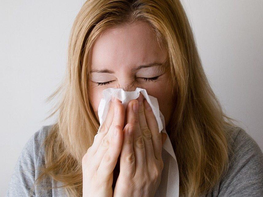 理由②:イギリスでも花粉症はある!